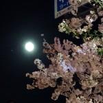 満月間近の美しい月